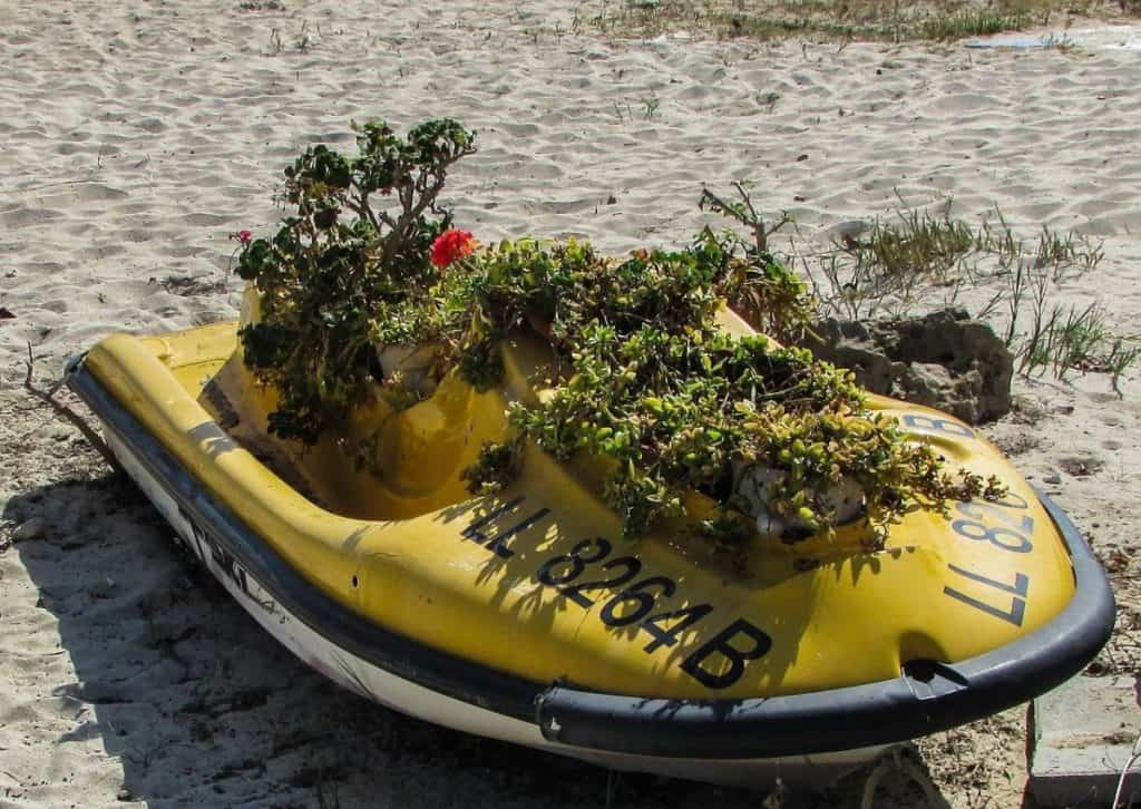 Abandoned jet ski on a beach with plants growing out of it