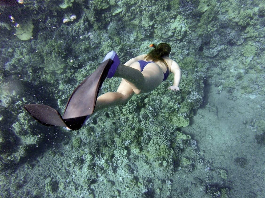 Snorkeling can include free diving to get a closer look like this woman is doing