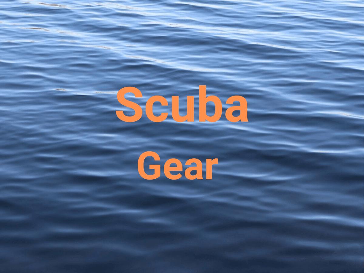 Title says scuba gear