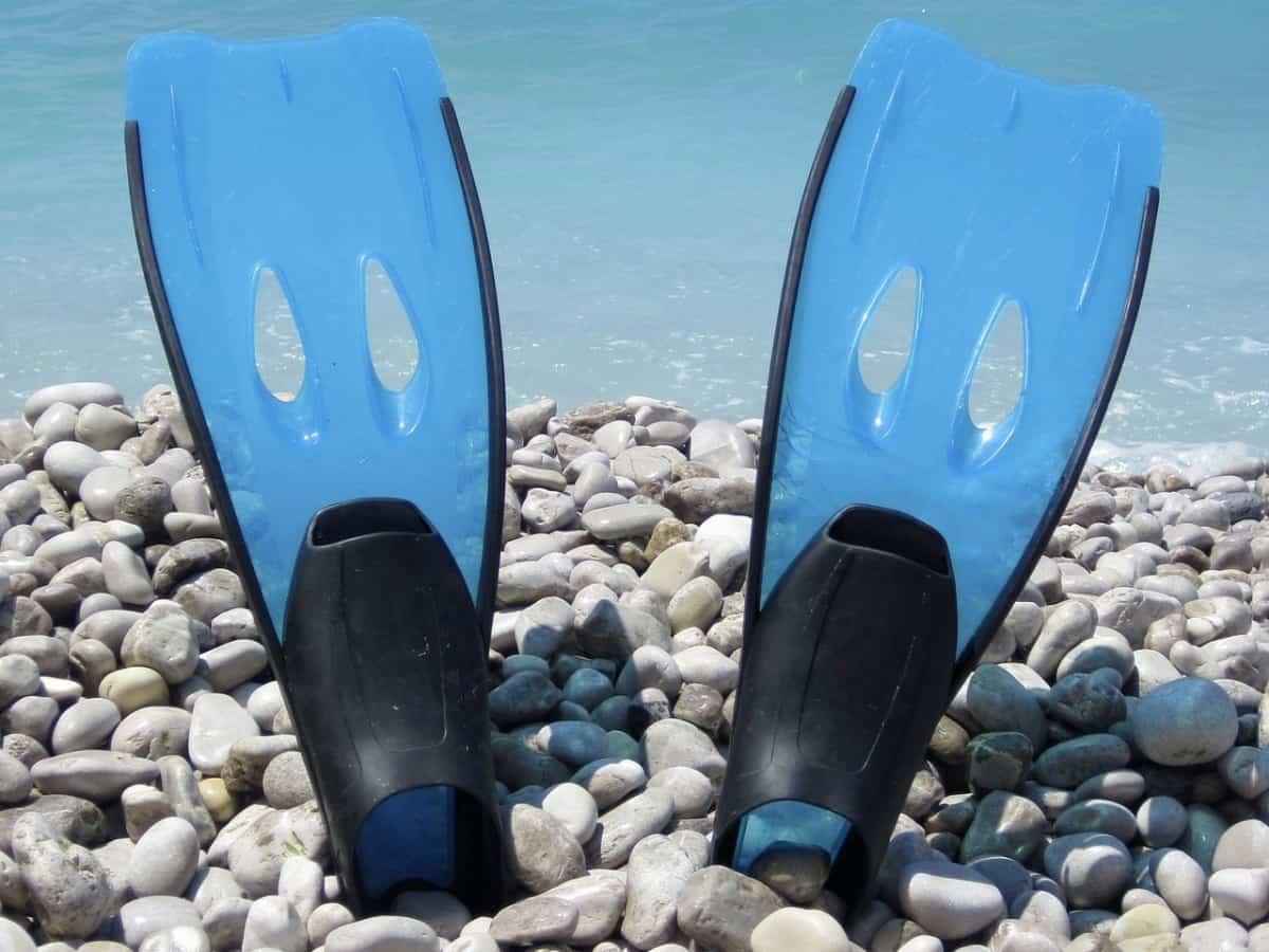 Blue fins stuck upright in rocks. Using fins when snorkeling offer benefits.
