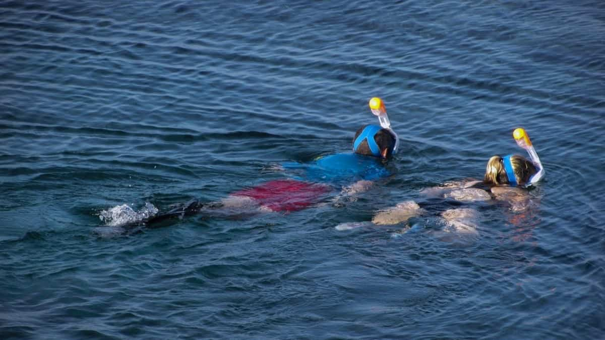 Pair of snorkelers using the buddy system, a great idea if you can't swim
